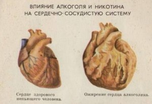 Алкогольное сердце