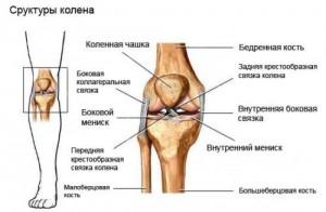 Травма коленного сустава: причины и симптомы